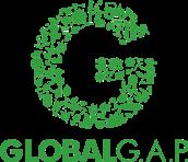 global-gap-certification-486x420
